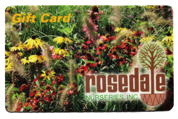 Rosedale Gift Card